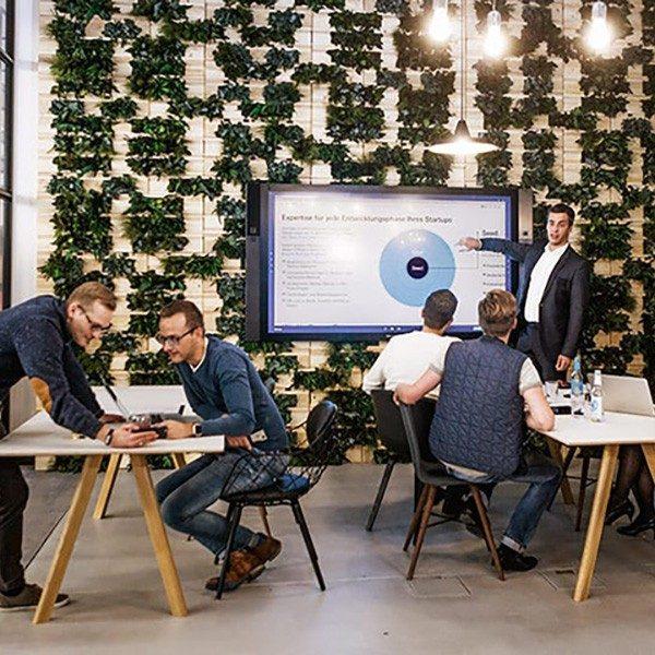 Gewächshaus – wo Ideen sprießen und gedeihen